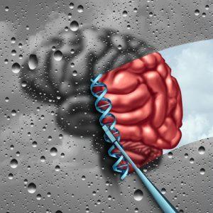Merck покупает Calporta, рассчитывая на новые лекарства от нейродегенеративных заболеваний